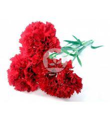 Paquete clavel rojo